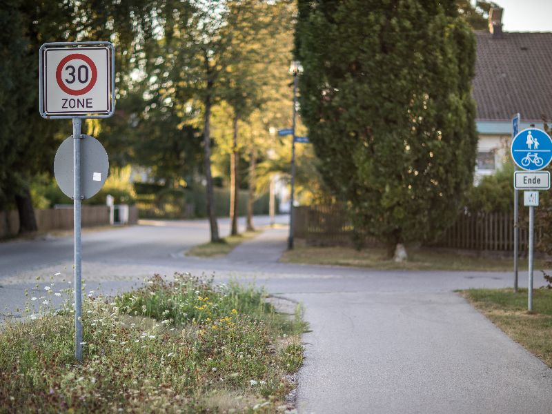 Reisch Tempo-30-Schild