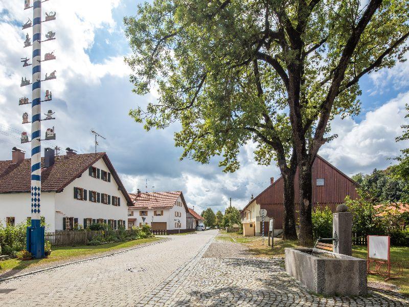 Dorfbrunnen und Maibaum Ellighofen